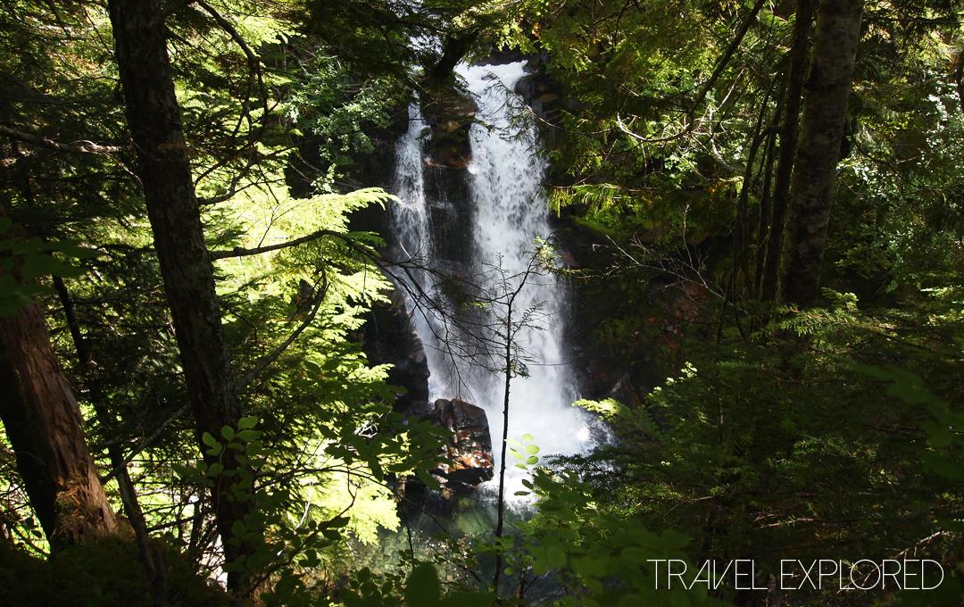 Mt Rainier - Carter Falls