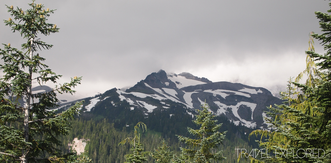Mt Rainier - View South