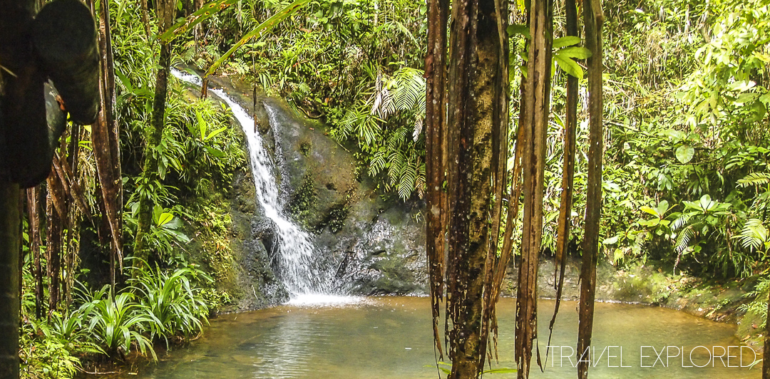 Suva Bushwalk Waterfall