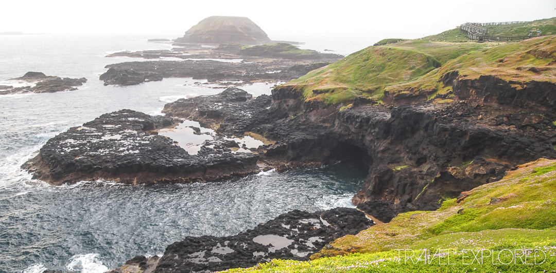 Phillip Island - The Nobbies, Seal Rocks and A Blowhole
