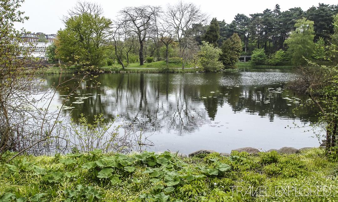Copenhagen Botanic Garden Lake