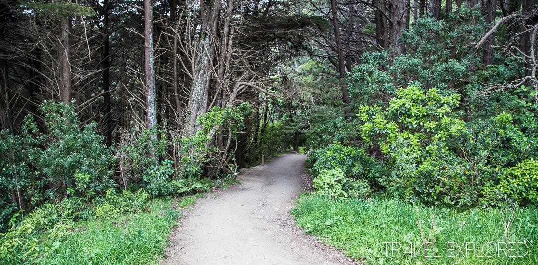 Wellington - Charles Plimmer Park