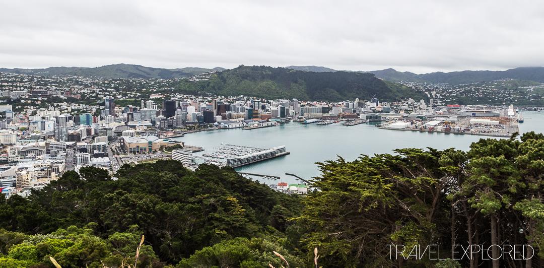 Wellington - Mt Victoria Lookout View