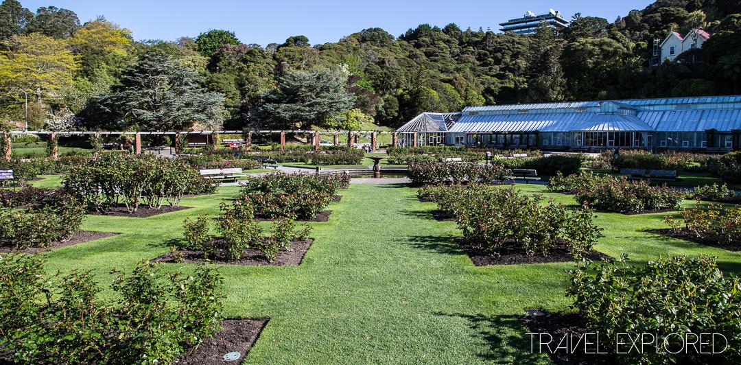 Wellington - The Lady Norwood Rose Garden
