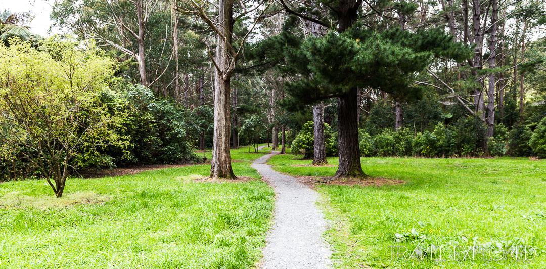 Wellington - Wainuiomata Recreation Area
