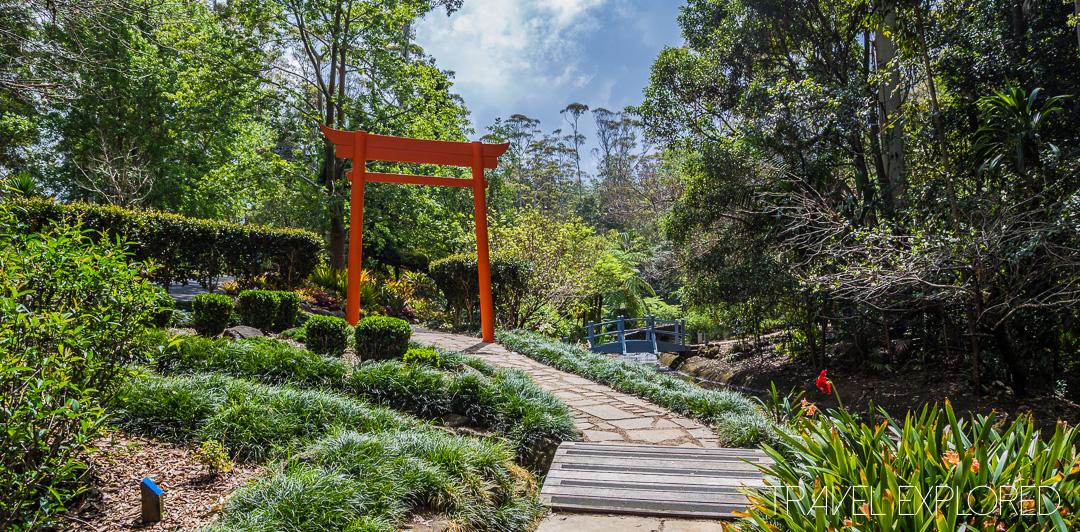 Tamborine Mountain - Botanical Gardens