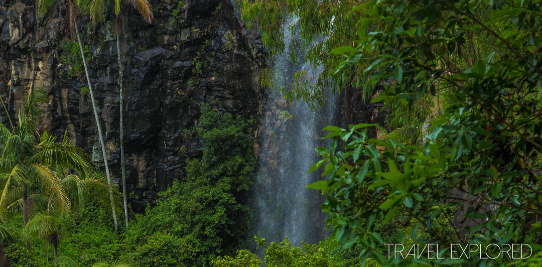 Tamborine Mountain - Cameron Falls
