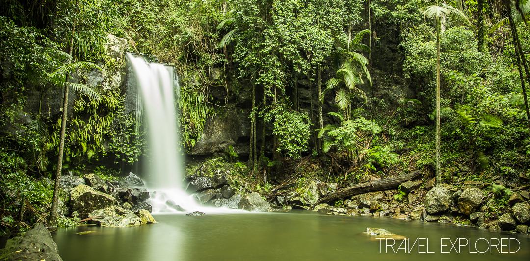 Tamborine Mountain - Curtis Falls