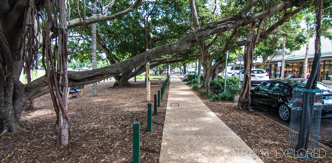 Bulimba - Shaded Pathway