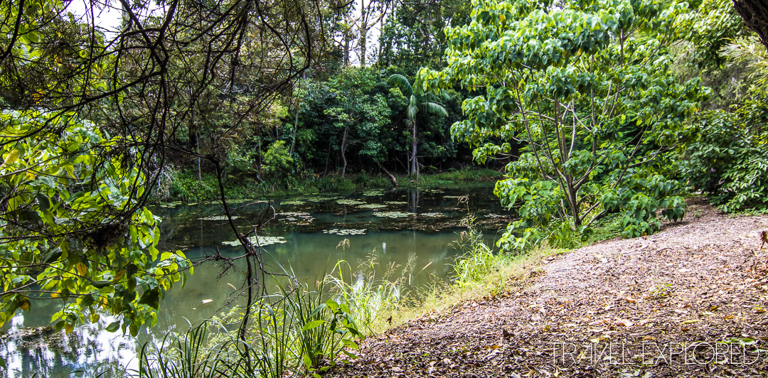 Buderim - Hidden Lake